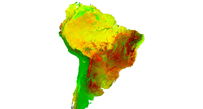 Variabilidade interanual da cobertura vegetal na América do Sul